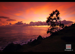 Sunrise - Gold Coast (charithra Hettiarachchi) Tags: morning sea colour tree clouds sunrise coast australia queensland goldcoast sigma1020mm charithrahettiarachchi canoneos7d