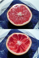 vorher - nachher (beba2007) Tags: grapefruit frhstck lecker gesund
