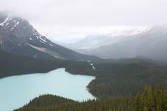 IMG_1417 (andys1616) Tags: canada alberta peytolake icefieldsparkway