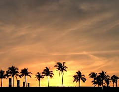 Greetings from sunny Florida (joiseyshowaa) Tags: morning sunrise dawn airport twilight florida fort palm palmtrees lauderdale fortlauderdale ftlauderdale broward browardcounty colorfulsky joiseyshowaa joiseyshowa