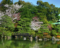 Heian Shrine Garden (NatashaP) Tags: bridge trees green japan garden japanesegarden pond kyoto shrine searchthebest explore sakura soe heian naturesfinest blueribbonwinner supershot interestingness92 flickrsbest challengeyouwinner abigfave anawesomeshot aplusphoto holidaysvacanzeurlaub favoritegarden superbmasterpiece infinestyle goldenphotographer diamondclassphotographer theunforgettablepictures a3b theperfectphotographer