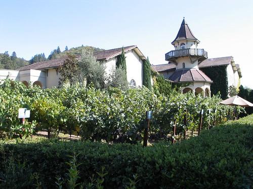 St. Jean winery