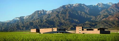 Arquitectura para el vino y el paisaje. Enología, turismo, bodega DiamAndes