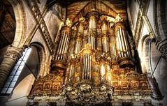 Organ Grinder - by Stuck in Customs