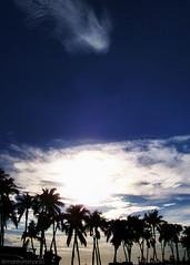 Into the Sun (manfrommanila) Tags: blue trees sunset sky sun silhouette clouds asia kodak philippines palm manila baywalk supershot impressedbeauty manfrommanila