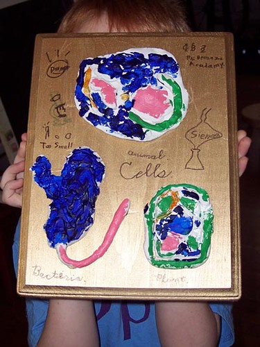 animal cell project pictures. Benny#39;s Cell Project