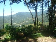 樹間的山 (amyjccd) Tags: 6號花園 景觀餐廳  新竹尖石
