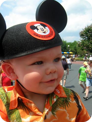 mouse ears 3