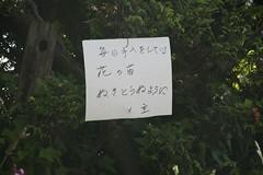 (shinyai) Tags: japan aomori hirosaki