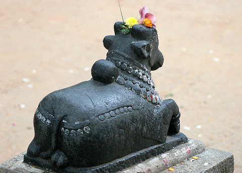 Decorated Nandi at Lalbagh 16Jun07