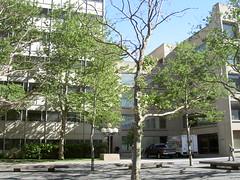 070622 mit sunny (Dan4th) Tags: cambridge boston ma mit 02139 massachusettsinstituteoftechnology