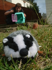 12/07/2007 (Day 224) - Today I Will Mostly Be Releasing Man-Eating Badgers Into The Area (Kaptain Kobold) Tags: white selfportrait news black macro grass alan misty garden iraq explore badger flowerpot 365 entitled villain timer myfave cuddlytoy softtoy catbox basra selfie day224 kaptainkobold 365days yourfave interestingness136 i500 365thursday 365explore 3650707 365set7 365year1