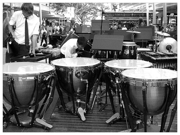 定音鼓/Kettledrums(Kettledrum)、Timpani/ティンパ二/Pauken(Pauke)/Timbales(Timbale)/Timpani(Timpano)