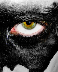 Black (AndreaUPl) Tags: blue red portrait black eye colors strange yellow sadness sad andrea surreal fantasy lonely emotional pedretti fanastic eyescutouts andreaup andreaupl andreapedretti