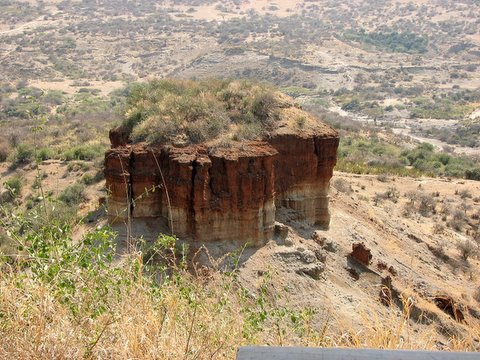 Olduvai Gorge where the Leakeys discovered Homo Habilis (named after wild Sisal, Oldupai)