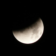 During Lunar Eclipse - by Not Quite a Photographr