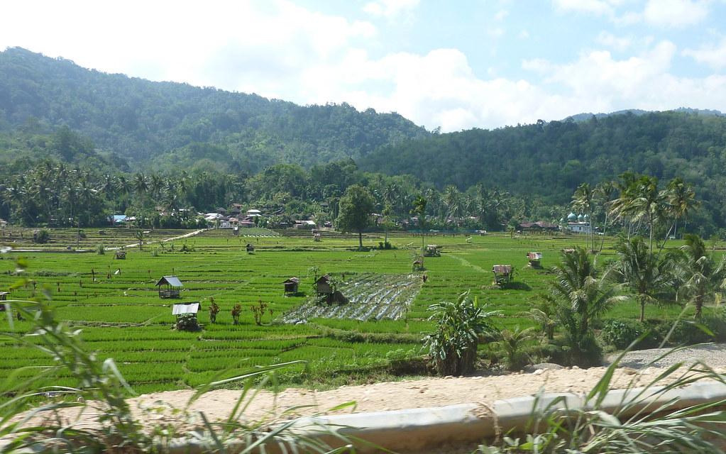 Sumatra-Bukittinggi (33)