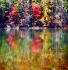 Fall Magical Colors (Ekler) Tags: autumn trees lake color reflection art fall texture nature water forest season landscape happy photo pond woods colorful artistic joy changing joyful effect svetlana orton stowers soloha