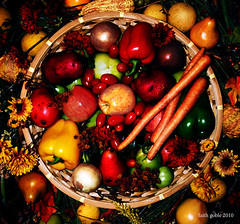 Happy Thanksgiving (faith goble) Tags: autumn red stilllife food flower green art fall vegetables leaves yellow fruit tomato avocado lemon colorful artist raw poem photographer basket pears kentucky ky grain harvest fresh cc potato gourd creativecommons poet writer apples peppers produce onion chrysanthemum plenty bounty bowlinggreen uncooked freetouse asterdaisy faithgoble gographix heritage2011 faithgobleart