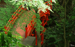 red bridge (* Yumi *) Tags: bridge red green japan tokyo soe naturesfinest yourfavorite 25faves abigfave shieldofexcellence colorphotoaward favoritegarden superhearts fiveflickrfavs