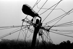 Stromleitungen in Ooty