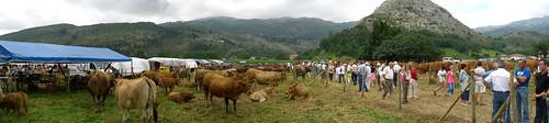 Livestock Fair Panorama (1)