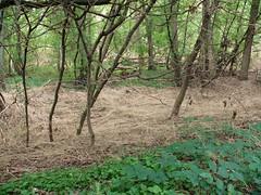 2007 September 011 (archangelm) Tags: grandriver brantford