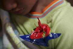 karya Djuadi (alimander) Tags: water festival indonesia java environmental rubbish environment recycle activism tuk jawa sustainable reuse salatiga lingkungan tanam sampah kalitaman