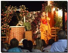 Fiesta (SantiMB.Photos) Tags: espaa andaluca spain fiesta singer crdoba flamenco cantante spectacle espectculo blueribbonwinner vacaciones2007 wowiekazowie tonadillera theperfectphotographer