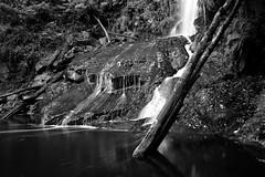 Erskine Falls 1 (Snapsmee) Tags: nature landscape eos victoria cannon lorne 30d erskinefalls splitpoint