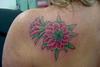 Flor de cactus Cactus flower www.sabrinaricci.com.br