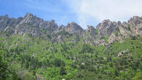 The Stunning Organ Mountains