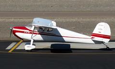 Cessna 140 N72637 (ChrisK48) Tags: airplane aircraft 1946 dvt phoenixaz cessna140 kdvt phoenixdeervalleyairport nc72637 n72637