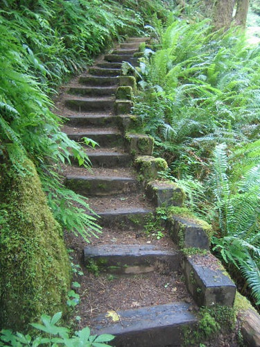 Stairway Suitable for Hobbits