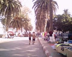 Saidia