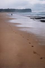Warriewood beach, Mona Vale, Sydney (jiulong) Tags: film zeiss 50mm fuji superia sydney australia contax nsw monavale sonnar iia warriewoodbeach