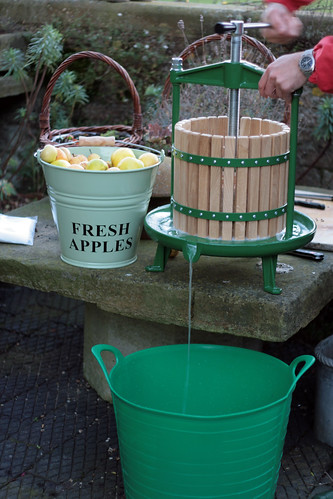 Apple juice press