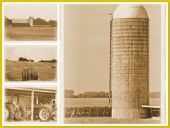 A farmer's work is never done (Tabbie-cats) Tags: sky tractor color building tree beautiful field sepia clouds barn rural america canon wow amazing cool corn fdsflickrtoys pretty farm mosaic kentucky ky country shed structure silo pasture crop farmer hay effect tone blueribbonwinner abigfave impressedbeauty ultimateshot superbmasterpiece