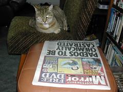 Geordie shocked at the headline!