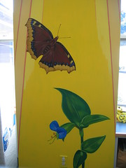mourning cloak butterfly in the sunshine (chelmsfordpubliclibrary) Tags: flowers summer usa leaves wall butterfly ma us leaf mural mourning library painted massachusetts steve murals childrens cloak mass maloney cpl morningglories paints chelmsford frenkel yetti glories chelmsfordpubliclibrary childrensroom chelmsfordma chelmsfordlibrary yettifrenkel stevemaloney asiandaylily