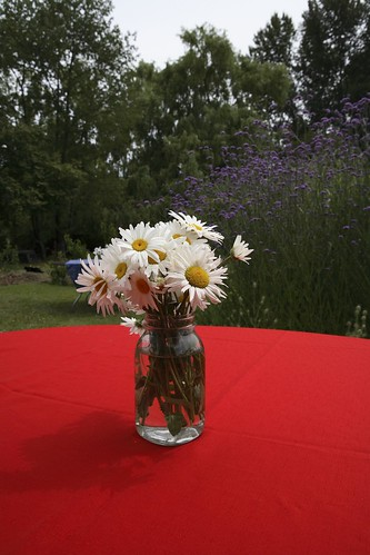 daisies on every table