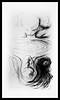 Narciso (jorge padilha) Tags: narciso lithography litogravura