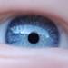 Ivan eye