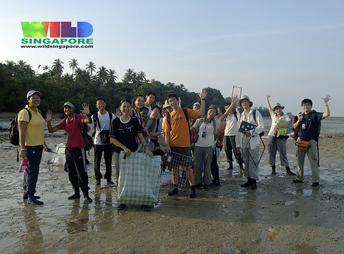 TeamSeagrass at Semakau May 07