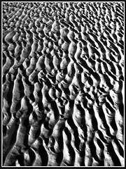 sand texture (frazerweb) Tags: frazerweb