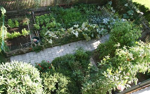 garden sept 18 2007