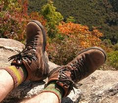 Trekking socks.JPG