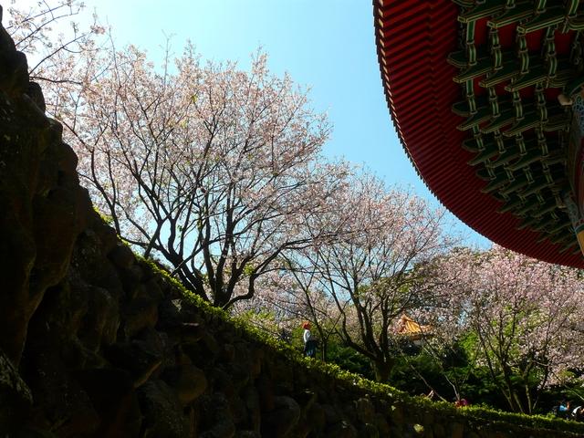 2010.03.11 淡水天元宮隨拍