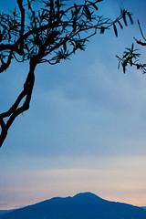 Vesuvius volcano in the morning (Alessandro Scoppa) Tags: italy capri town italia campania decoration napoli naples homedecor anacapri italianart southernitaly artshop southitaly coth suditalia capriisland bej housedecor fineartprints isoladicapri diamondclassphotographer flickrdiamond newacademy dragondaggerphoto flickrclassique magicunicornverybest imagofabulae fineartprintsitaly fineartshop fineartcapriisland