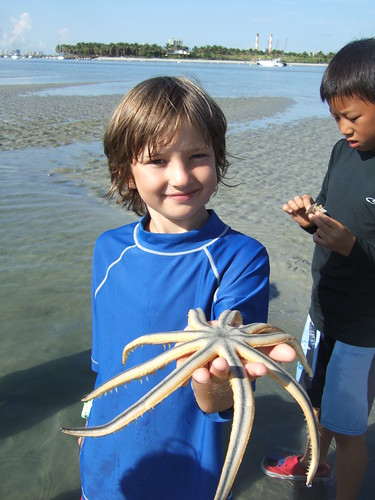 Beau finds a 9 armed starfish!